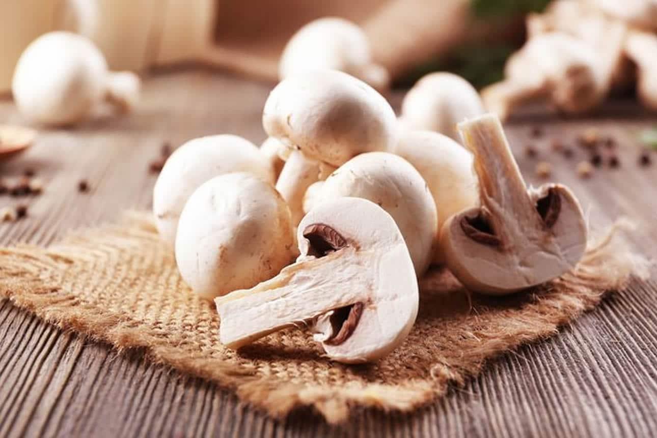 Champignons duurzaam verpakken Omori Europe